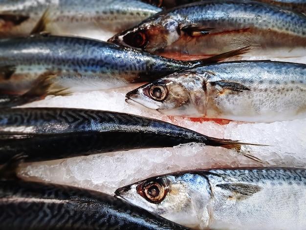 Close-up frozen saba mackerel fish para la venta en el supermercado