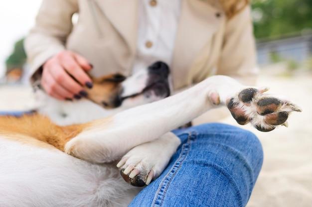 Close-up lindo perrito disfrutando el tiempo afuera