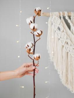 Close-up mujer sosteniendo una rama