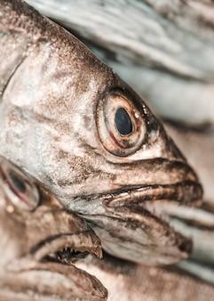 Close-up de pescado fresco en la tienda