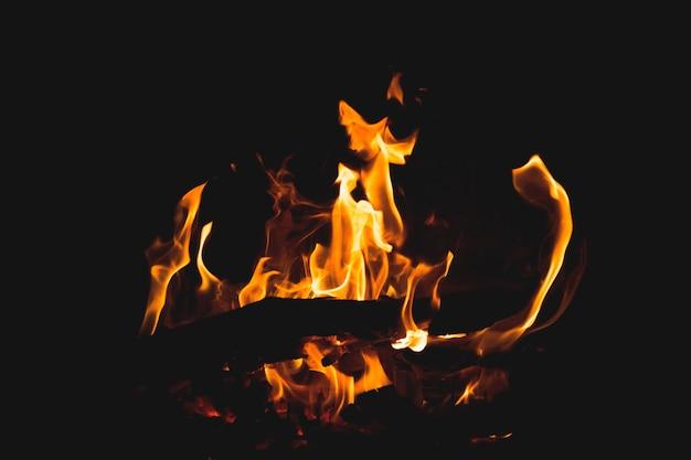 Closeup disparó madera ardiente y los hermosos colores del fuego