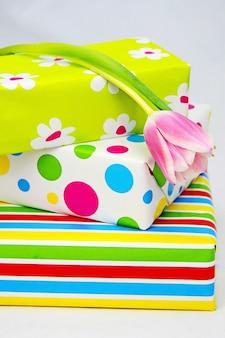 Closeup foto de cajas de regalo de colores envueltos y un tulipán sobre una superficie blanca