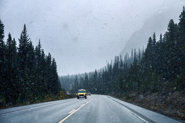 Coche amarillo conduciendo en fuertes nevadas en carretera en bosque de pinos