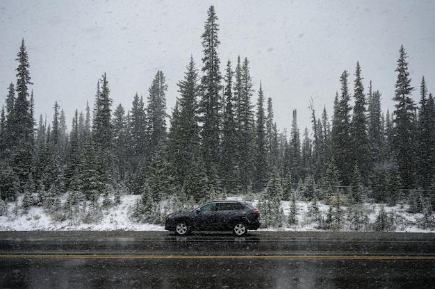 Coche suv negro en fuerte tormenta de nieve estacionado en el camino en el bosque de pinos