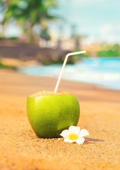 Coco en un cóctel de playa