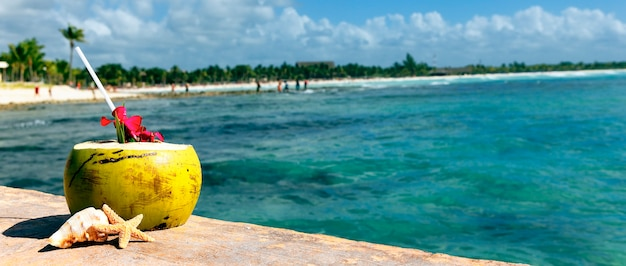 Coco con pajita en el mar