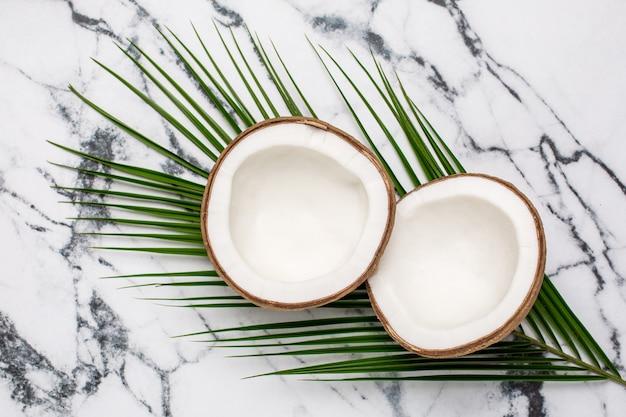 Coco tropical y palmera sobre mármol.