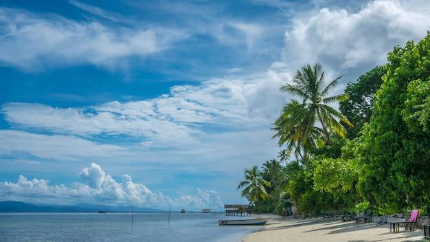 Coconat palm en kri island, casa de familia y muelle. raja ampat, indonesia, papua occidental.