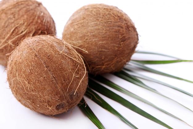 Cocos frescos en superficie blanca