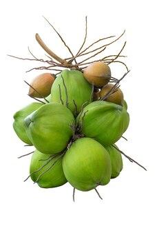 Cocos verdes y amarillos aislados en blanco