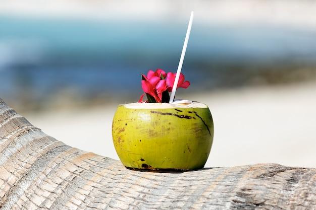 Cóctel con pajita en palmera en playa caribeña