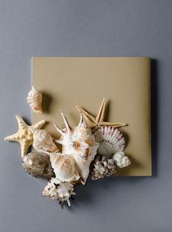 Colección de conchas marinas con tarjeta de felicitación vacía sobre un fondo gris. vacaciones de verano laicos plana plantilla.