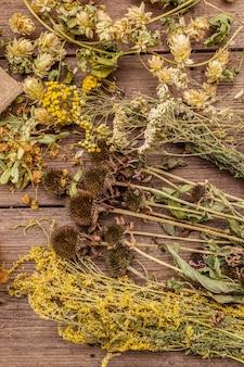 Colección de cosecha de hierbas y ramos de hierbas silvestres. medicina alternativa. farmacia natural, concepto de autocuidado