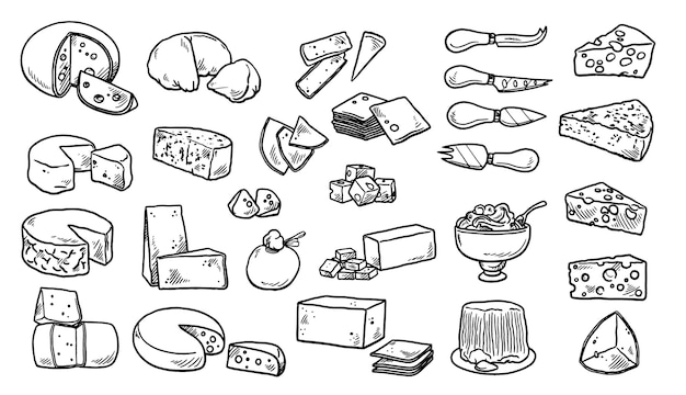 Colección elementos dibujados a mano de queso