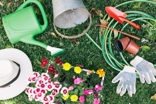 Colección de equipos de jardinería sobre hierba.