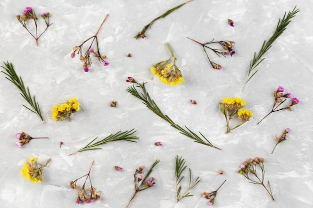 Colección floral vista superior
