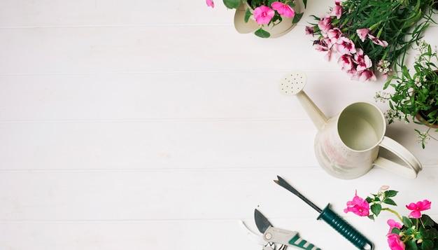 Colección de flores y maceta de riego.