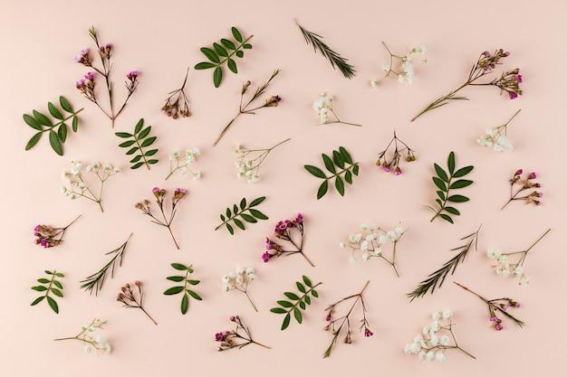 Colección de flores de vista superior en mesa