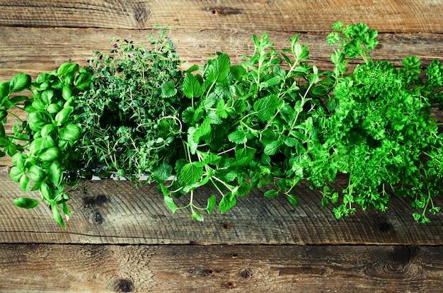 Colección de hierbas orgánicas frescas melissa, menta, tomillo, albahaca, perejil sobre fondo de madera. resumen de primavera o concepto de verano.