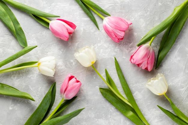 Colección de tulipanes de vista superior