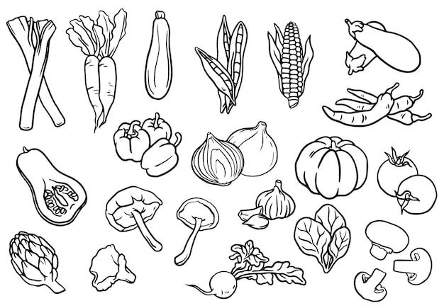 Colección de verduras en blanco y negro