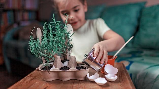 Colegiala bonita que crece hierbas de cocina