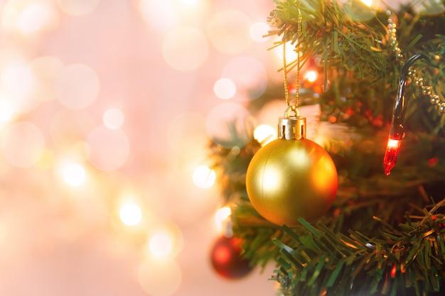 Colgando bolas de oro en las ramas de pino de navidad