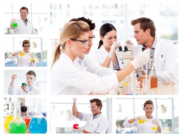 Collage de varios científicos haciendo experimentos
