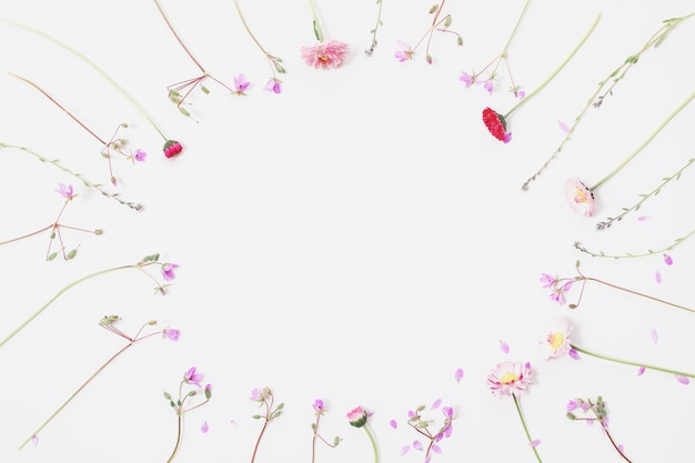 Coloque flores silvestres planas sobre un fondo blanco, estampado floral de flores y pétalos azules, ramitas de la planta, hierbas anuales