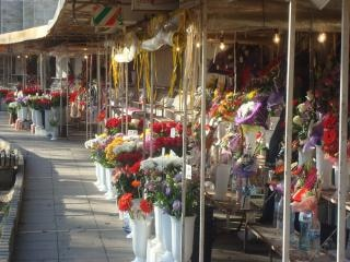 Colores de la flor de mercado