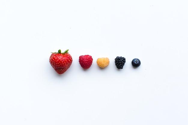 Coloridas bayas frescas saludables en una fila sobre un fondo blanco