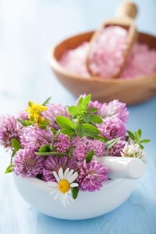Coloridas flores y hierbas medicinales en mortero y sal rosa