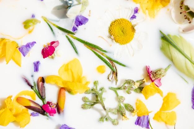 Coloridas flores de primavera en un baño de leche de fondo estampado