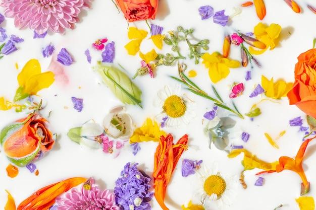 Coloridas flores de verano en un fondo de baño de leche