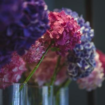 Coloridas lilas en jarrones separados en florería
