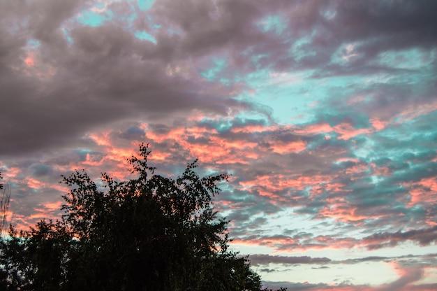 Colorido atardecer de verano después de la lluvia con espectaculares nubes azules y rosadas
