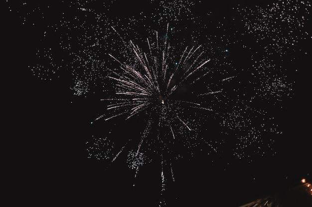 Coloridos fuegos artificiales en el cielo negro