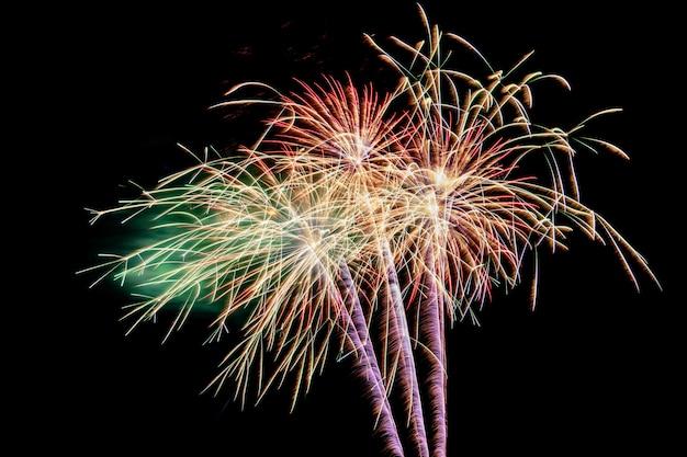 Coloridos fuegos artificiales contra un cielo nocturno negro. fuegos artificiales para año nuevo. exhibición hermosa hermosa de los fuegos artificiales en el lago urbano para la celebración