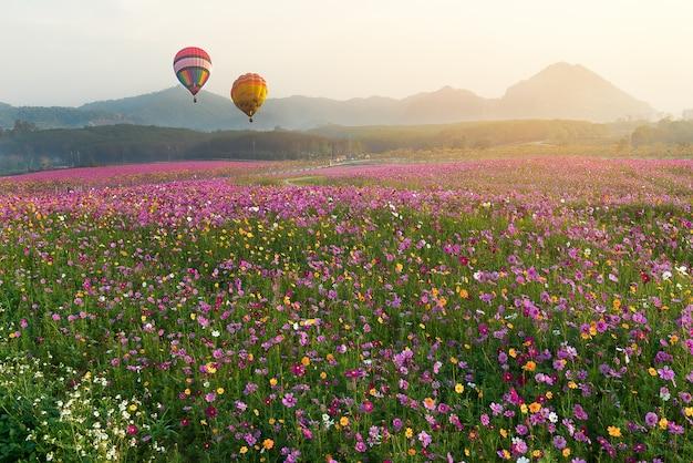 Coloridos globos aerostáticos en la madrugada