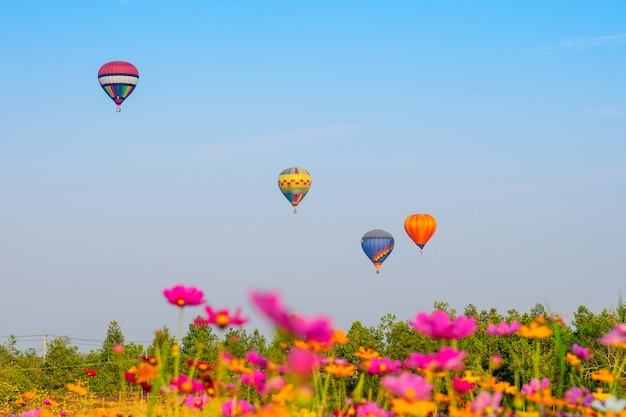 Coloridos globos aerostáticos volando sobre flores cosmos