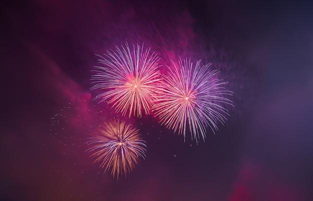 Coloridos hermosos fuegos artificiales saludan contra el oscuro cielo nocturno