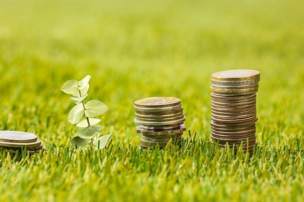Las columnas de monedas sobre la hierba