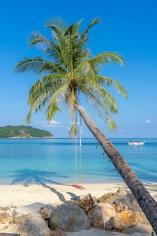 Columpio colgar de la palmera de coco sobre la playa de arena cerca del agua de mar azul en la isla de koh phangan, tailandia. concepto de verano, viajes, vacaciones y vacaciones.