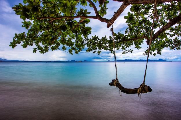 Columpio de cuerda en la playa con ramas de árboles, larga exposición, mar suave