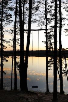Columpio hecho a mano en el bosque de pinos cerca del lago al atardecer