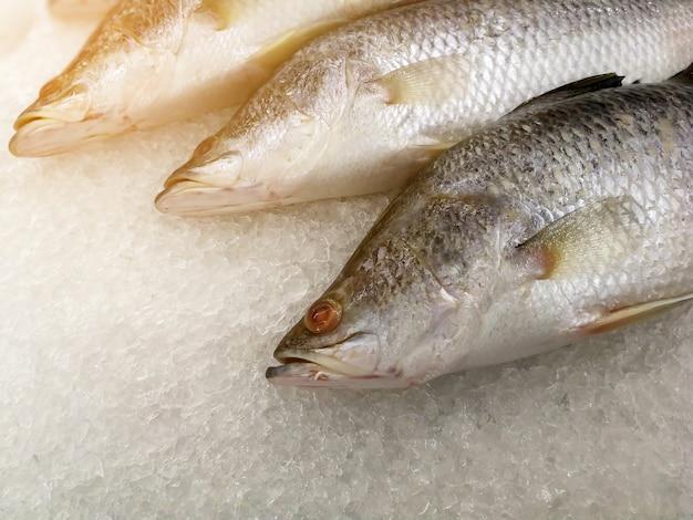 Coma pescado fresco en hielo en la caseta de mariscos en un mercado en venta para cocinar