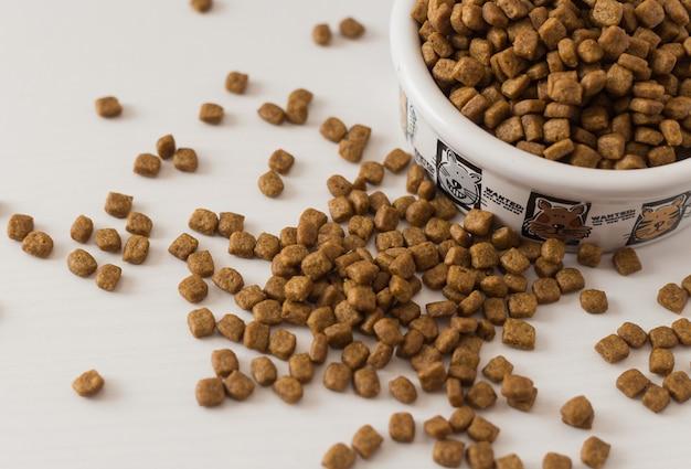 Comida para gatos seca en un tazón blanco sobre fondo blanco