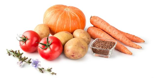 Comida para perros o gatos en un plato de acero inoxidable con verduras crudas sobre fondo blanco para el diseño de la tienda de mascotas.