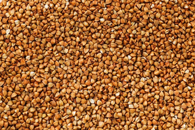 Comida de trigo sarraceno. cereales útiles para vegetarianos.