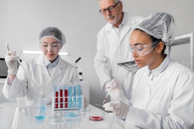 Compañeros de laboratorio haciendo experimentos